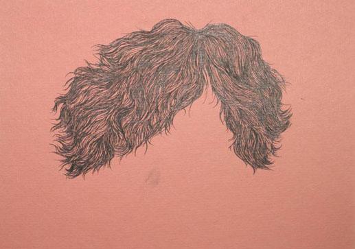 scott-wig.jpg